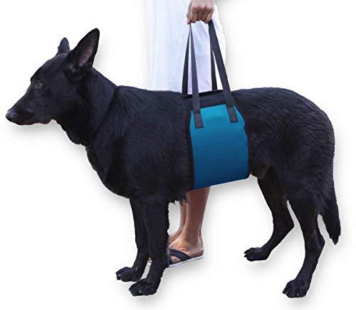 El arnés de elevación para perros, la eslinga de soporte ayuda a los perros con patas delanteras o traseras débiles a...
