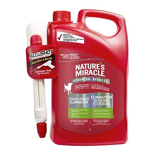 Nature's Miracle Advanced Stain & Odor Remover Just for Dogs, Pet Stain Eliminator, 5 Litres with Accushot Handle