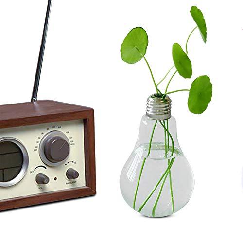 (Ivolador Lightbulb Glass Flower Planter Vase Terrarium Container Office Home Garden Décor)
