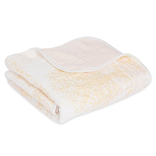 Aden And Anais Stroller Blanket Size - 5