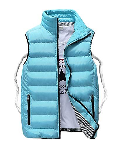 Gilet Manteau Image Manches Comme Matelassé Ultra Jacket Homme Léger Doudoune Sans E6YRwvnx