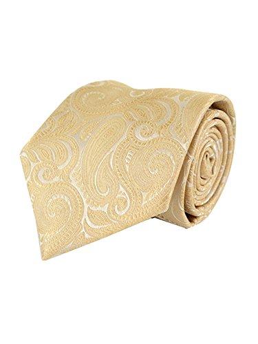 Men's Taupe Paisley 100% Microfiber Poly Woven Wedding Neck Tie