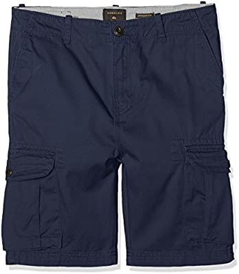 87bd80cd03 Quiksilver Boys' Crucial Battle Shorts, Blue (Blue Nights - Solid), Size 24/ 8: Quiksilver: Amazon.co.uk: Sports & Outdoors