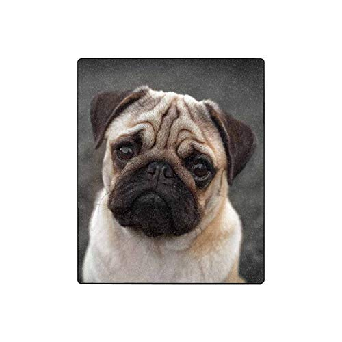 "INTERESTPRINT Pug Puppy Sad Dog All Seasons Couch Blanket Travelling Camping Blanket 50""(W) x 60""(L)"