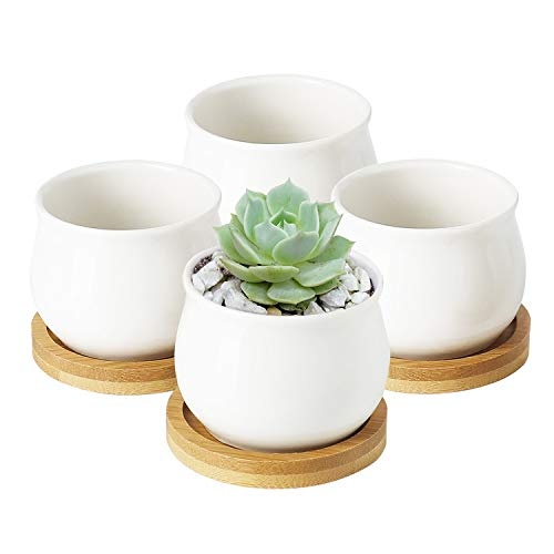Greenaholics Succulent Plant Pots - 2.76 Inch Ceramic Round Container for Mini Succulents, Cactus, Small Flower Pots with Bamboo Trays, Set of 4, White ()