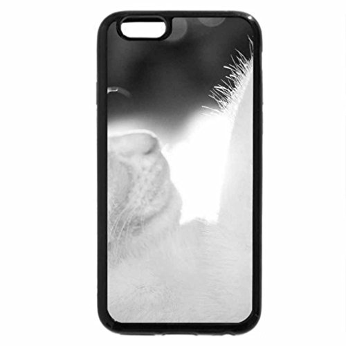 iPhone 6S Case, iPhone 6 Case (Black & White) - Dreaming cat...