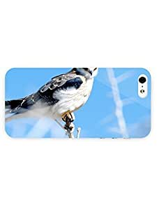 3d Full Wrap Case for iPhone 5/5s Animal Hawk34