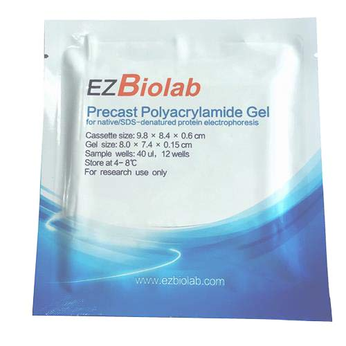 Image of EZBiolab EZG2001-8T-50 Precast EZgel, 8%, 10 Wells, 1.5 mm Thickness (Pack of 50) Buffers