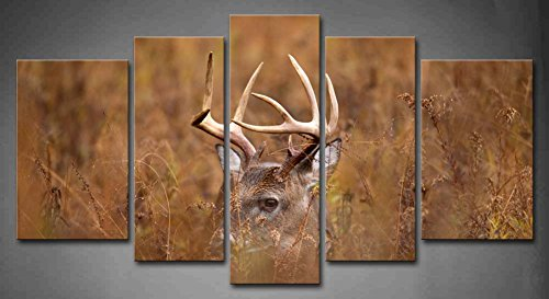 First Wall Art - 5 Panel Wall Art White Tailed Deer Buck In