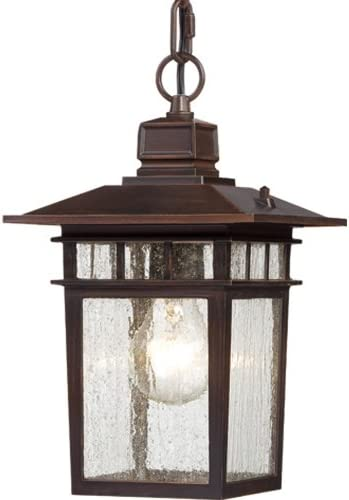 Nuvo Lighting 60 4955 Cove Neck One Light Hanging Lantern 100 Watt A19 Max. Clear Seeded Glass Rustic Bronze Outdoor Fixture