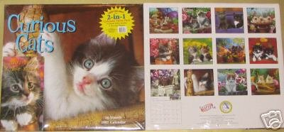 Curious Cats 2007 Calendar (16 month) includes 2007-2008 Planner