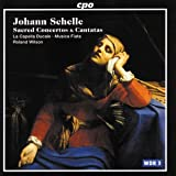 Schelle: Sacred Concertos & Cantatas