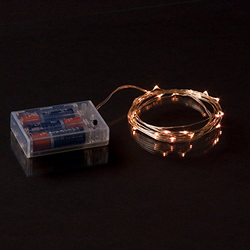 RTGS 20 Warm White Color Micro LED String Lights Battery Operated on 7 Feet Silver Color Wire