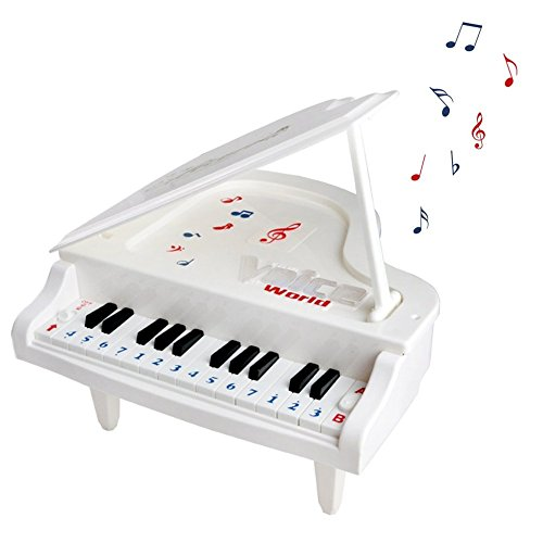Toy Piano Electronic Piano Keyboard, Fajiabao 14 Keys Music Toy Keyboard Toy Set with Beautiful Light Gift for Children Kids Girls Boys Early Learning