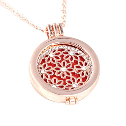 Necklace - Odeer Vintage Locket Essential Oil Diffuser Necklace And Pad Fragrance (F) ()