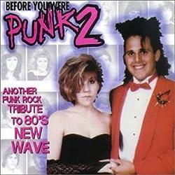 Before You Were Punk Rock 2