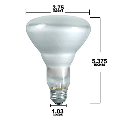 Westinghouse Lighting 0364700, 65 Watt, 120v Frosted Incand BR30 Light Bulb, 2000Hr 650Lm
