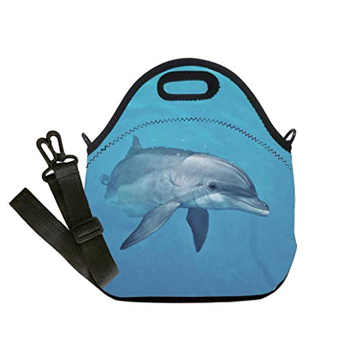 - Lunch Box Insulation Lunch Bag Large Cooling Tote Bag Neoprene Insulated Lunch Tote Bag Curious Female Atlantic Bottlenose Dolphin custom Stylish Lunch Bag, Multi-use for Men, Women and Kids