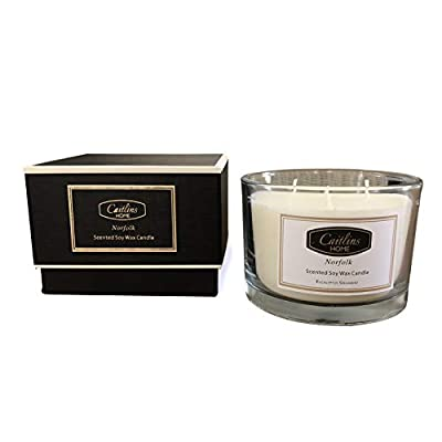 Caitlins Home Aromatherapy Stress Relief 3 Wick Candle Eucalyptus Spearmint - Lavender and Vanilla LARGE 3 WICK 13oz Candle - Promote Wellbeing and Relieve Stress. A Luxury Candle to Soothe, Relax and Calm after a Long Hard Day. BENEFITS OF SOY - Natural, Renewable, Environmentally Friendly and Biodegradable. We Only use Premium Fragrance Oils to Accent any Home Beautifully. Perfect when Traveling, Eliminating Cooking Smells and Pet Odors. THE PERFECT GIFT for any Occasion-Thank You, Birthday, Get Well, House Warming, Wedding, Teacher Gift, Christmas, Baby Shower, Sorry, Girlfriend, Sister, Wife, Mother, Anniversary or Just Happy Monday or Friday. It Comes Beautifully Packaged in a Beautiful Rigid Presentation Box Ready to Gift. No Need to Purchase Gift wrap. - living-room-decor, living-room, candles - 41M8t3rPhmL. SS400  -