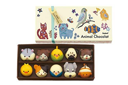 Animal Chocolat(アニマルショコラ)