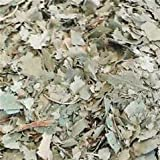 Herbs Birch Leaf ~ One Ounce ~ Dried Herb ~ Ravenz Roost herbs