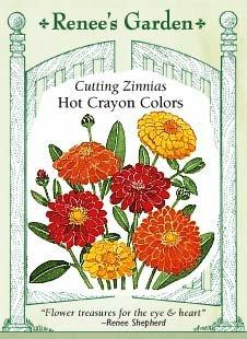 Zinnia - Hot Crayon Colors Seeds