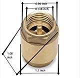 "Brass One Way Check Valve 1/2"" Female Backflow"