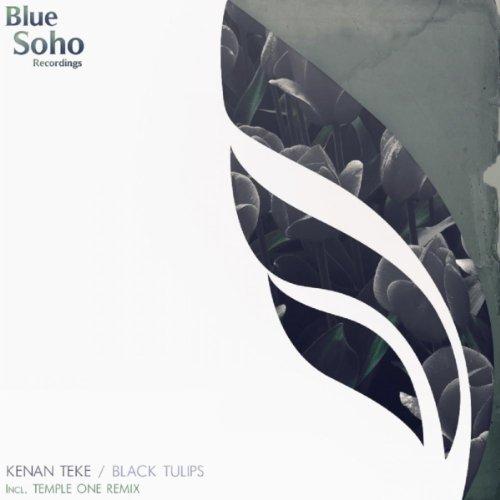 Temple Tulips (Black Tulips (Temple One Remix))