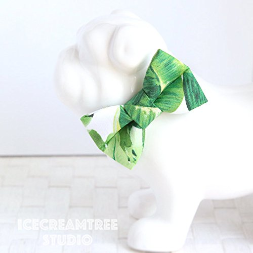 Tropical Green Leaf - Bow Tie Collar Slide On, Collar Add On Bowtie, Bow Collar Accessories
