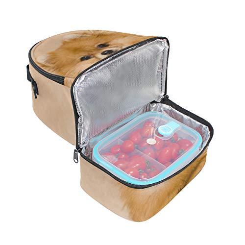 correa Spitz el ajustable doble Pomeranian almuerzo para para picnic Cooler Bandolera nH0fqSwn