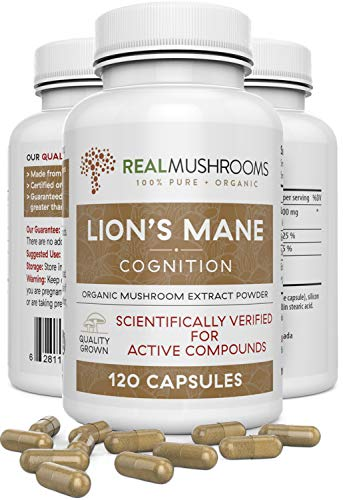 Lion's Mane Mushroom Cognition Capsules (120caps), Organic Lions Mane Mushroom Powder Extract Capsules, Brain Supplement, 60-Day Supply of Organic Mushroom Supplement Brain Vitamins, Focus Supplement
