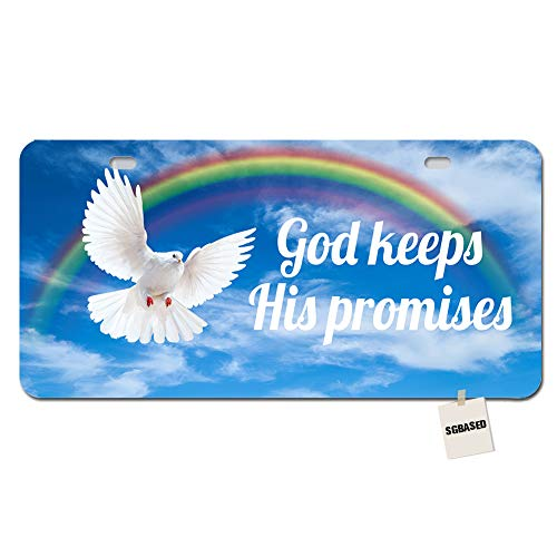 SGBASED License Plate Funny License Plate Cover Metal Auto Car Tag 2 Holes(11.8 X 6.1 inches) - Rainbow Dove God Keeps His Promises ()