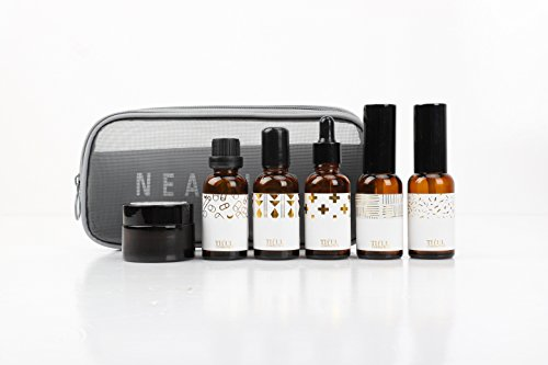 Tiful Convenient 6-in-1 Refillable Cosmetic Containers Set for Travel with Free Carrying Kit. Boston Round Amber Glass set inc. Mist Spray Bottle, Dropper bottle and cream - Cosmetic Glass Bottles