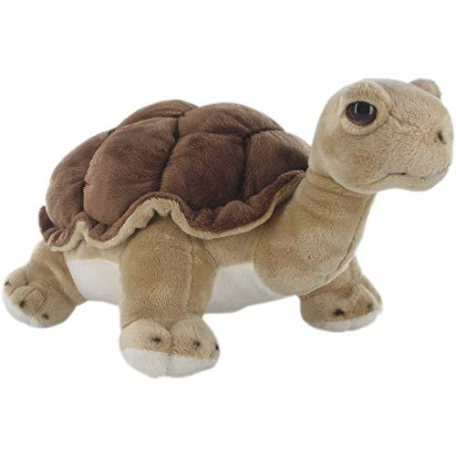 Hamleys Land Turtle Soft Toy  Brown