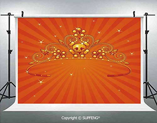 Photography Background Fancy Halloween Princess Crown with Little Skull Daisies on Radial Orange Backdrop Stars Decorative 3D Backdrops for Photography Backdrop Photo Background Studio Prop