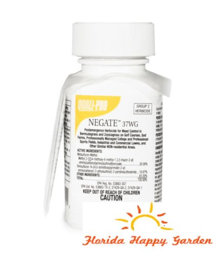 negate-37wg-15-oz