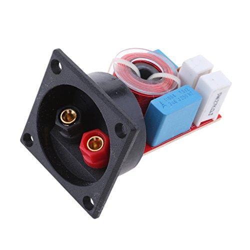 F Fityle Adaptador de Divisor de Frecuencia Cruce de Altavoz Filtro de Audio Profesional 80W 2Vías, Fácil Instalación: Amazon.es: Electrónica