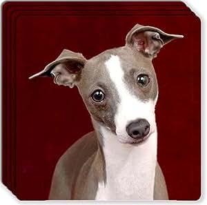 Italian Greyhound Rubber Coaster Set
