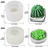 Funshowcase Succulent Plant with Pot Silicone Molds 2-count for Resin Soap Candle Wax Polymer Clay Concrete Plaster Fondant Cake Décor