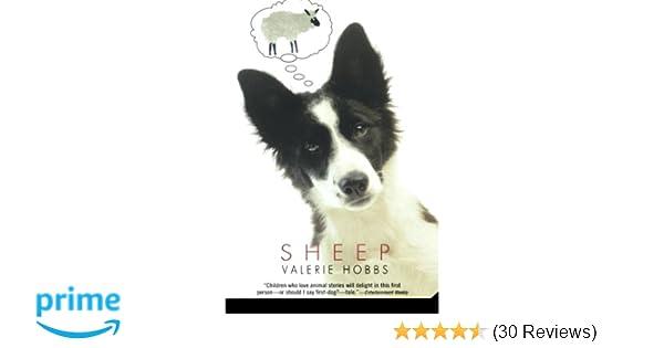 Sheep Valerie Hobbs 9780312561161 Amazon Books