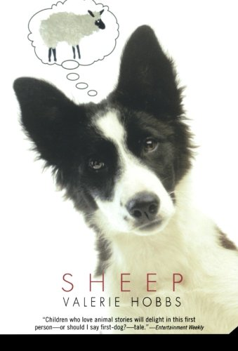 Sheep (Border Collies In Action)