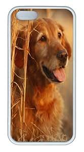 iPhone 5S Case,Golden Retriever In The Field TPU iPhone 5/5S Case Cover Whtie