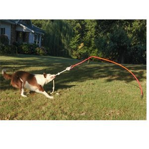 Tether Tug Large - Interactive Dog Toy - Outdoor Dog...