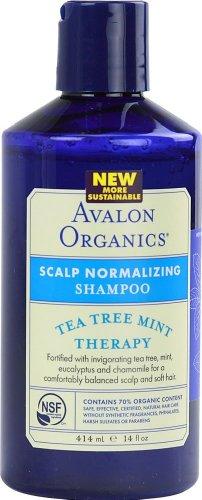 Avalon Organics Scalp Normalizing Therapy Tea Tree Mint Shampoo, 14 Ounce ( Case of 6 ()