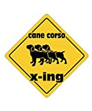 Idakoos - Cane Corso X ING XING III - Dogs - Crossing Sign