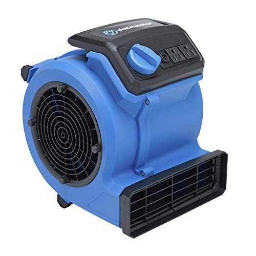 Vacmaster AM201 0101 550 CFM Portable Air Mover, Blue