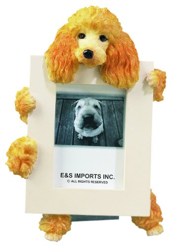 Frame Poodle (Apricot Poodle Picture Frame Holds Your Favorite 2.5 by 3.5 Inch Photo, Hand Painted Realistic Looking Poodle Stands 6 Inches Tall Holding Beautifully Crafted Frame, Unique and Special Poodle Gifts for Poodle Owners)