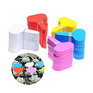 MOPKJH Tag Giardino Impianto di plastica Ecologico Etichette per Piante Spesse Etichette vegetali per Piante da Esterno… 6 spesavip