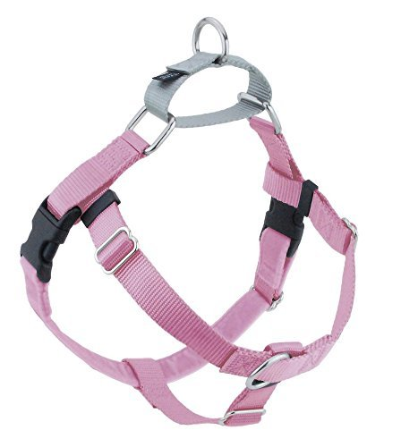 2 Hounds Design Freedom No-Pull Dog Harness with Leash, Large, 1-Inch Wide, Raspberry (Best Dog Harness Review Uk)