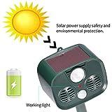 LSJZS Solar Ultrasonic Repelente de Aves para jardín LED Flash Mole Ultrasonido Control de Perro Zorro roedor Ratas Plaga Animal 120db-alerta